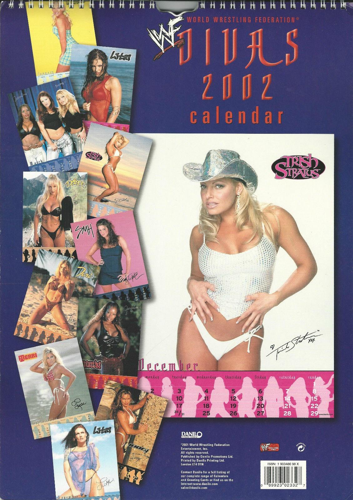 WWE WWF Divas Calendar 2002 Lita Trish Terri Debra Ivory #2